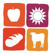 Farmers market illustration