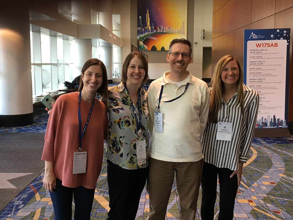 Anatomy program alumni catch up in Chicago – Penn State Health News