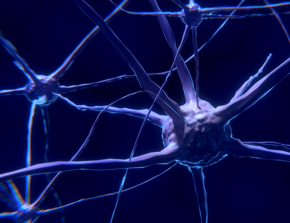 Microscopic view of neurons and nerve cells, depicted against a blue background.