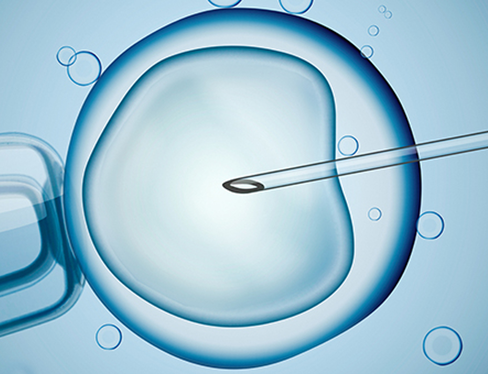 A graphical depiction of a needle being inserted into a cell.