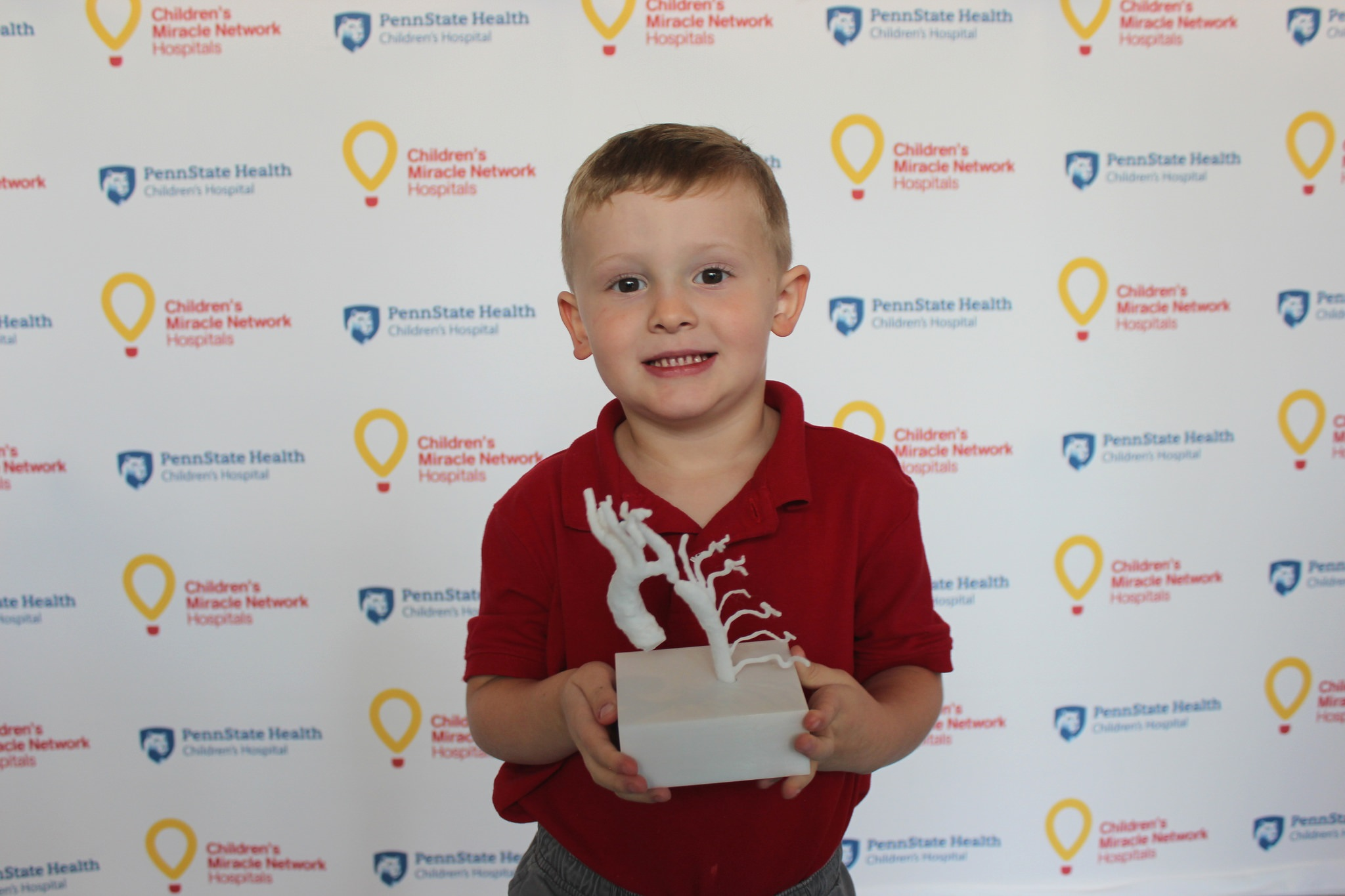 Henry Thomas, age 3, of Boiling Springs holds a 3D printed model of his own heart. He stands in front of a background with Penn State Health Children's Hospital and Children's Miracle Network Hospitals logos. He is wearing a polo shirt and pants. The model of his heart is on a white plastic block and resembles a gnarled tree.