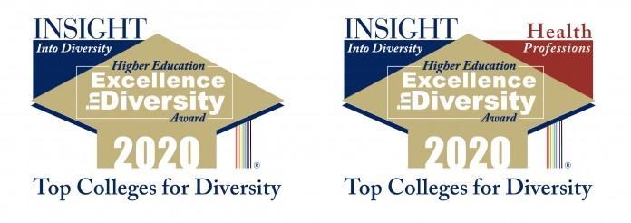 Both logos of the HEED Award are shown – the Insight into Diversity Higher Education Excellence in Diversity Award 2020 and the Health Professions version.