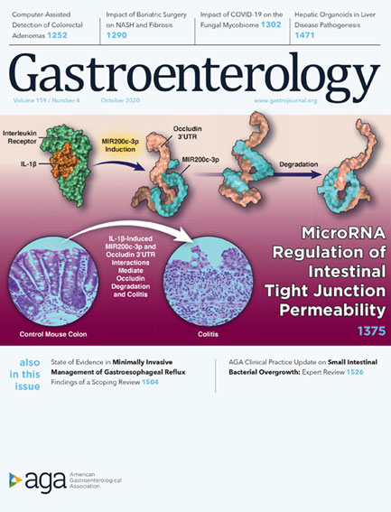 The cover of the October 2020 edition of the academic journal Gastroenterology.