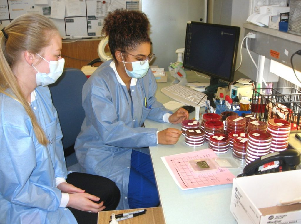 Medical laboratory scientists Mya Falcioni and Kirsten Hedderick perform sample analyses in a microbiology lab.